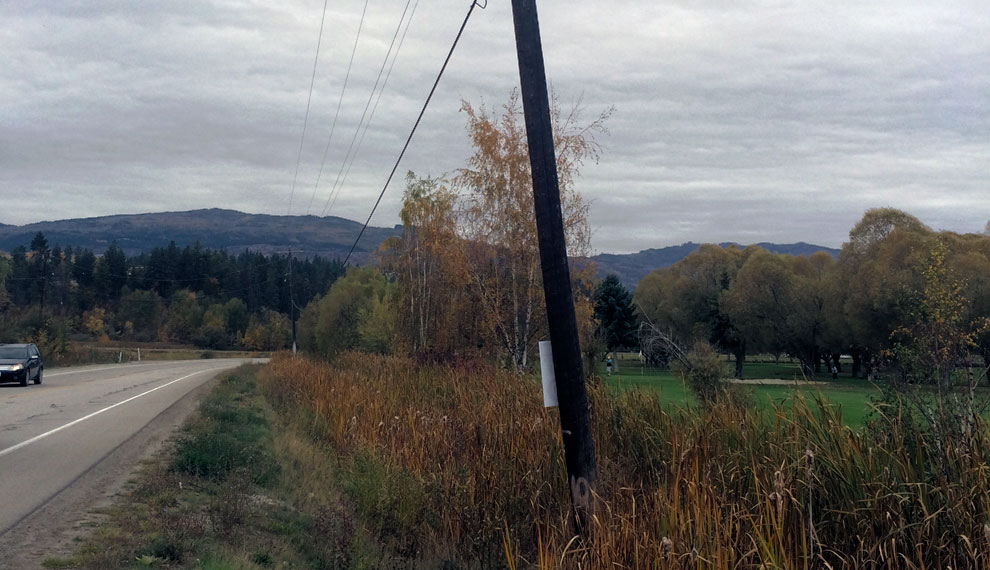 Swamp Road Utility Pole Support